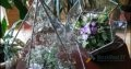Флорариум тиффани – ДОДЕКАЭДР | вытянутый
